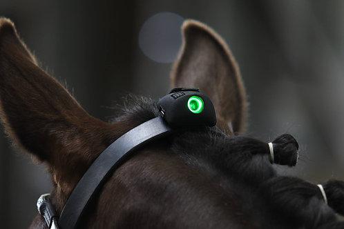 Equla Vert Sensor