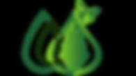 Logo_nouveau_Ecole_ô_Chrysalides.png