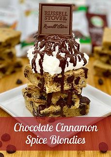 Chocolate Cinnamon Spice Blondies Galler