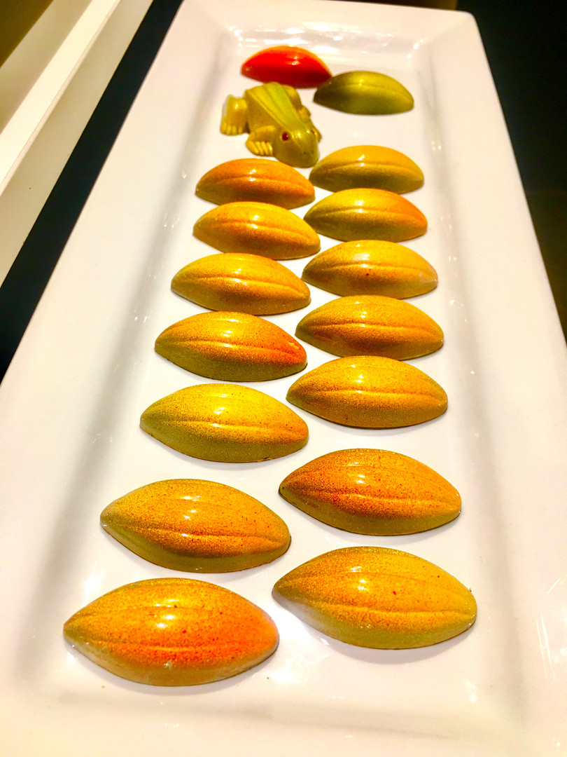 Cocoa Butter Tempered Chocolates
