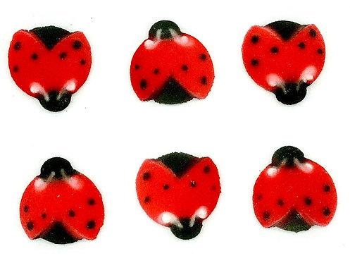 Sugar Ladybug (6 Pieces)