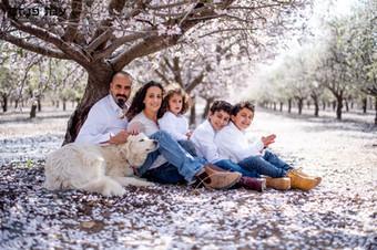 צילומי משפחות בטבע עם חיות מחמד