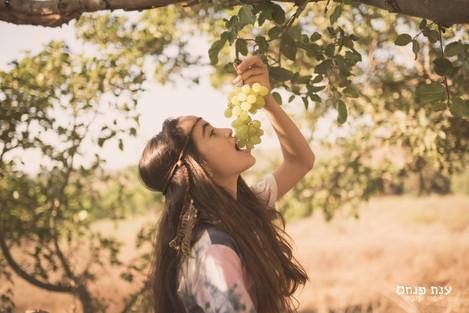 בוק בת מצווה ענבים