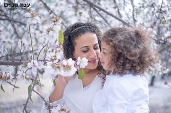 צילומי משפחות בטבע שקדייה