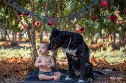 צילומי תינוקות ברימונים