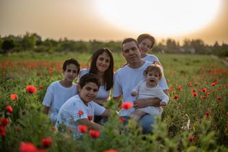 צילומי משפחות בטבע בכלניות