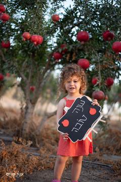 צילומי משפחות בטבע שנה חדשה