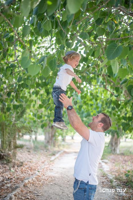 צילומי משפחות בטבע עם עצים