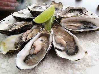 Verse oesters kopen