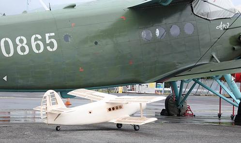 """Antonov AN2 """"Colt""""2400mm rakennussarja"""