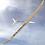 Thumbnail: High Aspect 3.1M F3J Class