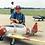Thumbnail: North American AT-6 Texan 2560mm