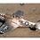 Thumbnail: P51 D Mustang  2490mm