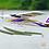 Thumbnail: Super EZ V4 Reflex-Gyro RTF