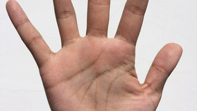 Top 12 hand analysis questions frequently asked