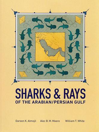 Shark & Rays.JPG
