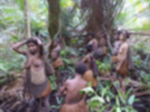 Go Adventure with Papua local Agent
