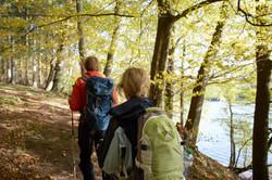Wandern Wald und Möhnesee