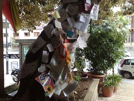 arbre memoire falcone.jpg