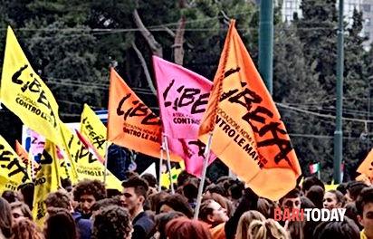 libera-2-3.jpg