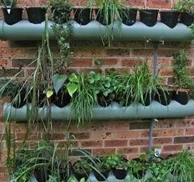 getgreen_vertical garden_pipe based_edited.jpg