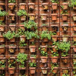 getgreen_vertical garden_ms frame_edited