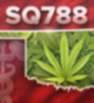SQ 788 Medical Marijuana_1530021170161.p