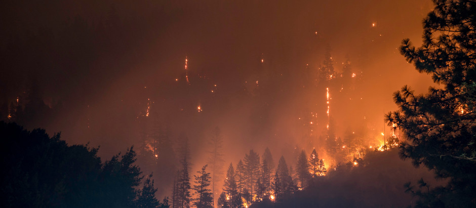 SWC Supporting Wildfire-affected Communities