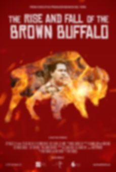 RISE_AND_FALL_BROWN_BUFFALO.jpg
