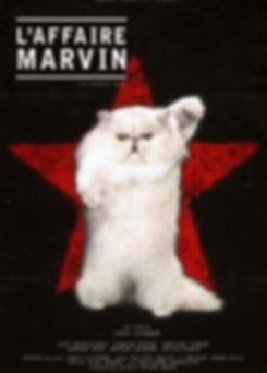 THE_MARVIN_CASE.jpg