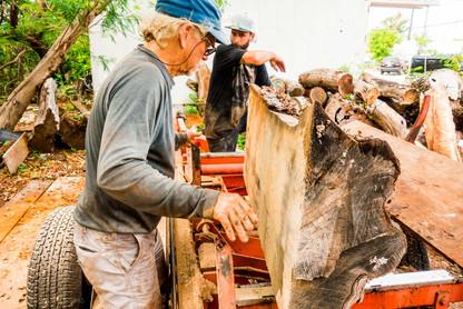 Key West Wood Slabs For Sale