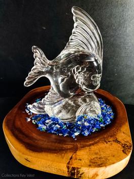 Spin Fish