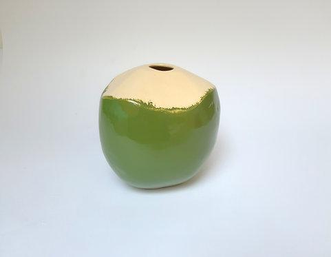 Vaso coco