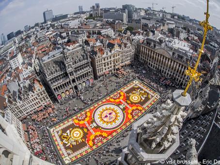 Blumenteppich Brüssel 2022