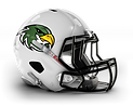 Leicester Falcons L.png