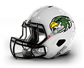 Leicester Falcons R.png
