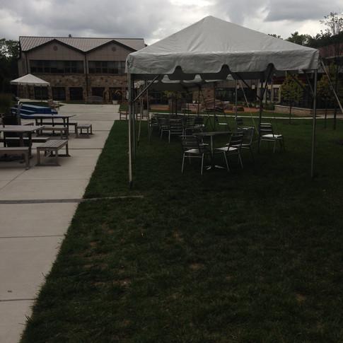 20 x 20 DIY grass set up