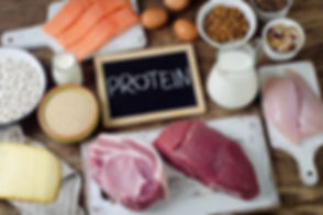 Best Foods High in Protein. Healthy eati