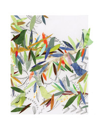 Birds in a Forest