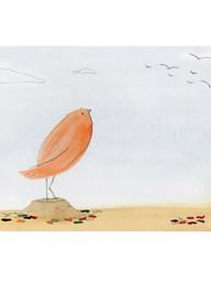 A Migrant Bird