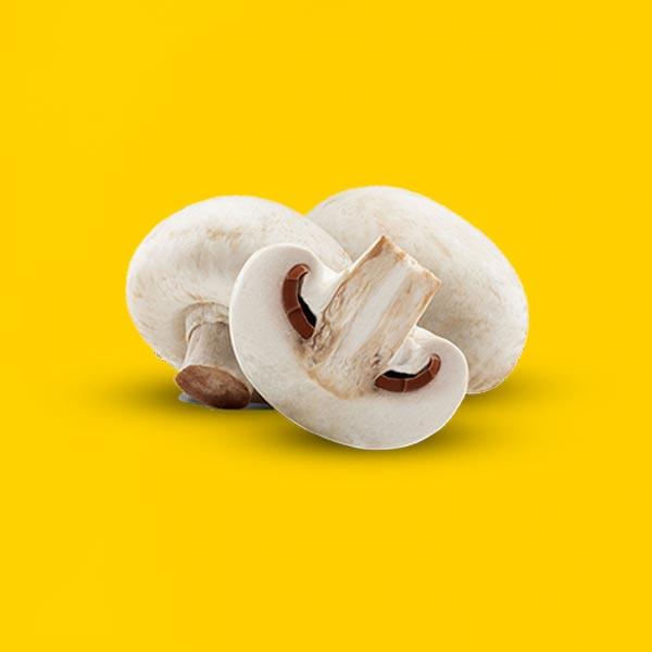 Kërpudha 1kg