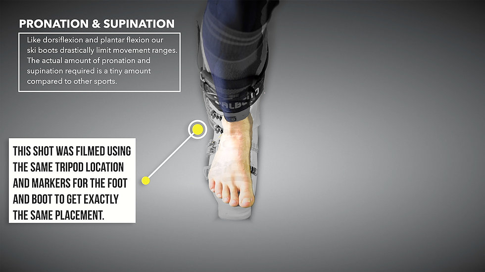 Pronation-Supination.jpg