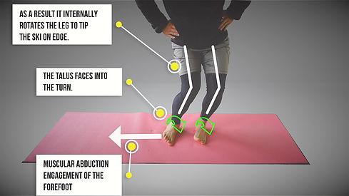 Knee Angulation.jpg