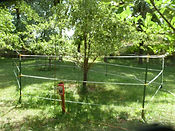 Wilmington, North Carolina-Protecting trees with a electric fence