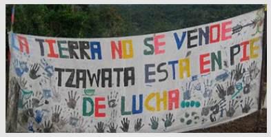 struggle, land, tzawata, Ecuador, Amazon