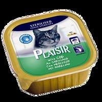 פלזיר חתול מסורס דג קוד.png