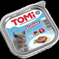 טומי חתול גורים.png