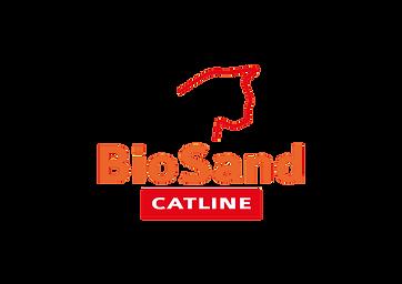 ביוסנד לוגו.png