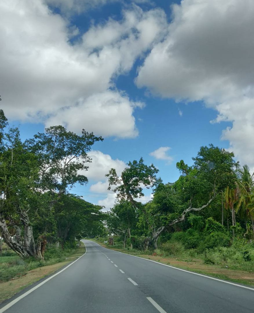 Road To Yercaud, Karnataka