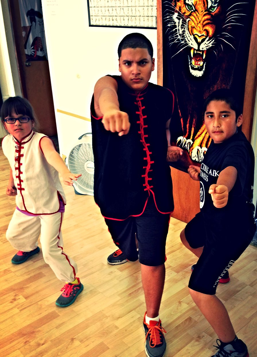 Invincible Ark Kids Martial Arts
